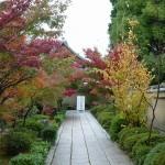 大徳寺「芳春院」入口